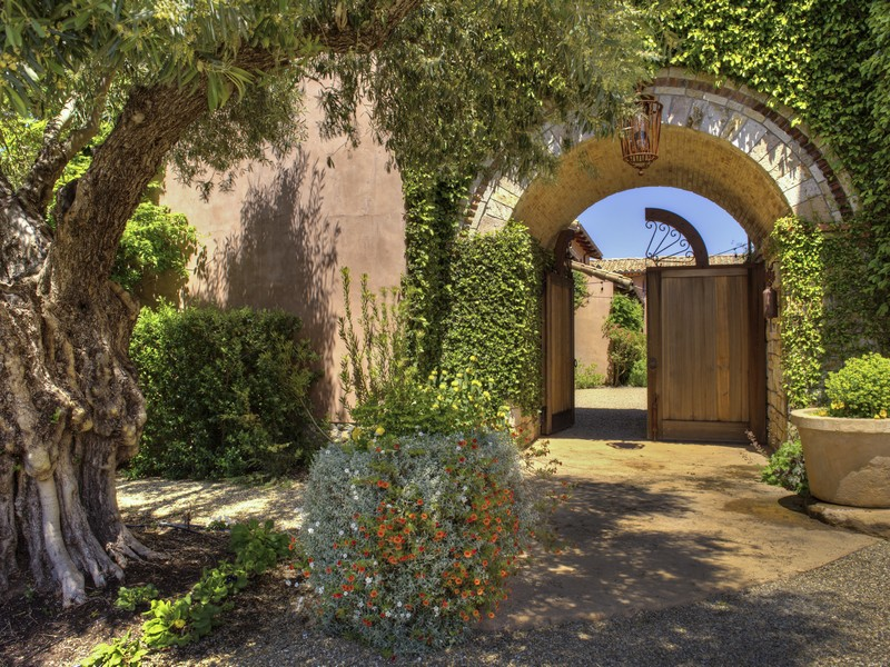 5800 petrified forest front gate entrance with olive tree