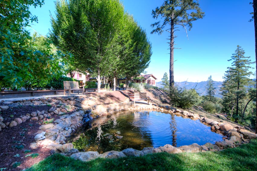 2110 Diamond Mountain Road pond