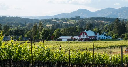 Napa real estate listings